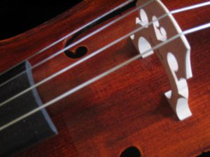 cello-detail-3-1497572